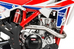 2019 RR 4-Stroke Race Edition Engine Detail