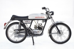 1929-Beta-Camoscio